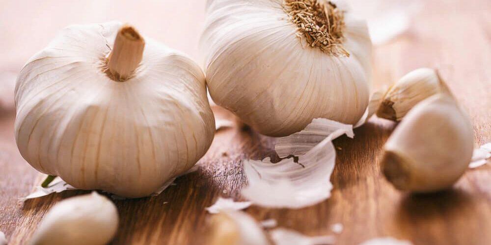Česnek kuchyňský – latinsky Allium Sativum