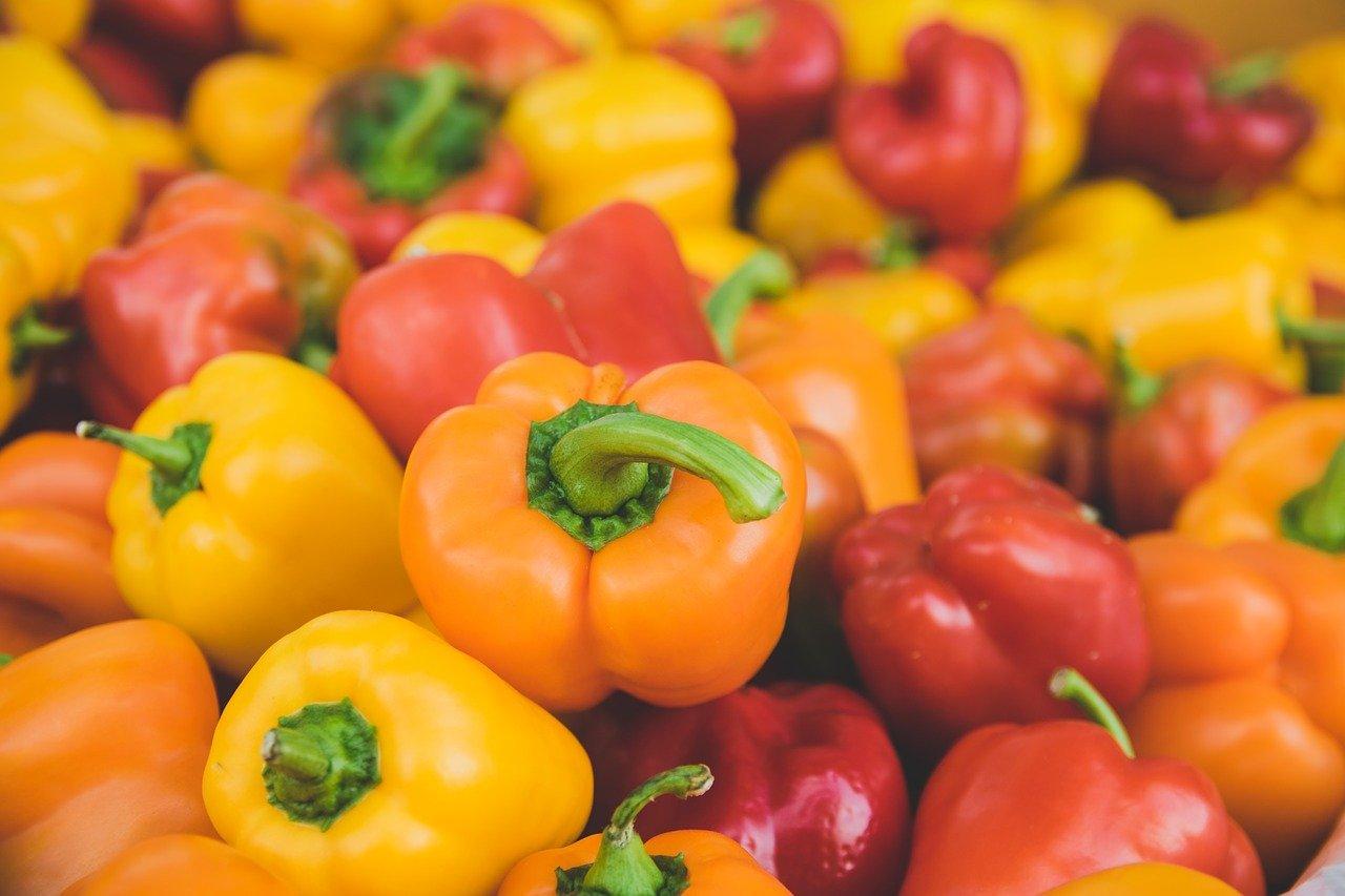 Paprika - Capsicum