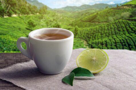 který čaj na hubnutí si vyberete