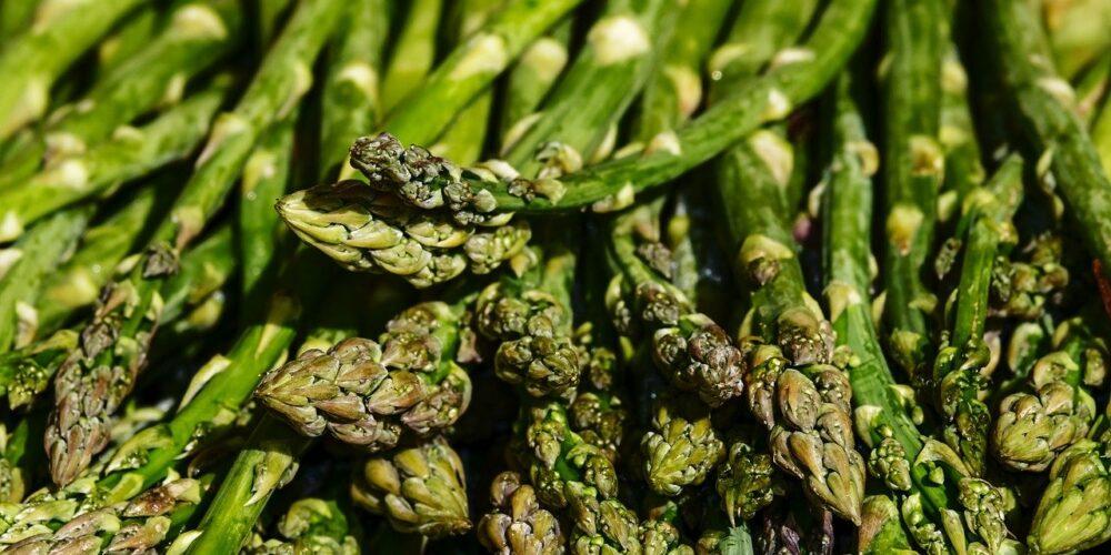 Chřest lékařský- latinsky Asparagus officinalis