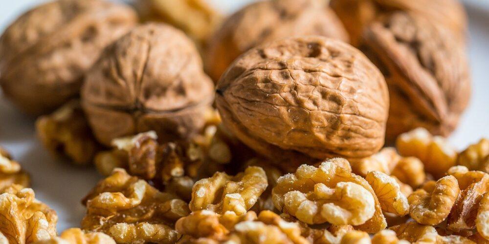 Vlašské ořechy - latinsky Juglans regia